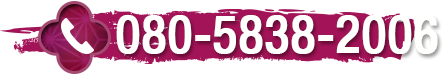 080-5838-2006